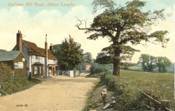 Gallows Hill, Abbots Langley