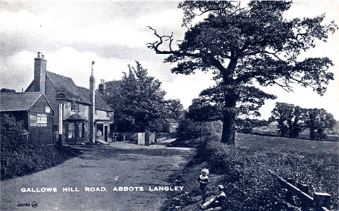 abbots-langley-gallows-hill