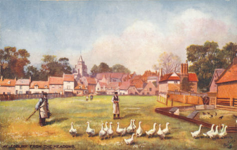 Aylesbury from the Meadows - Ducks - Tuck Oilette