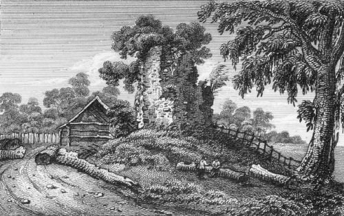 Print of Berkhamsted (Berkhampstead) Castle, 1818, from The Antiquarian Itinary, by James Storer