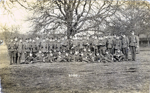 No 11 Platoon, Inns of Court, Berkhamsted, 1916
