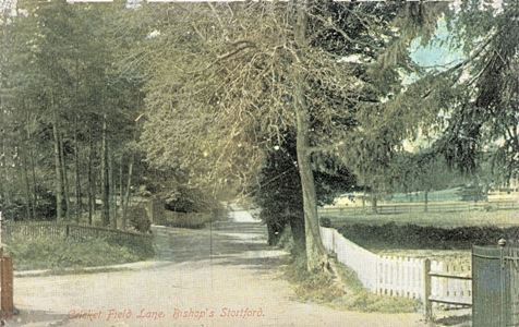 bishops-stortford-cricket-field-lane-1907