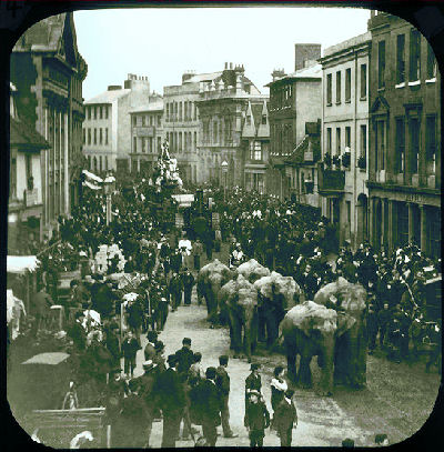 Elephants, Fore Street, Hertford, photograph by Elsden