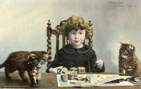 Child with kittens, by Austin, photographer, St Albans, circa 1903