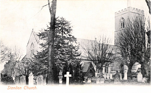 St Mary, Standon, Herts, Bedwell Series post card - 1905