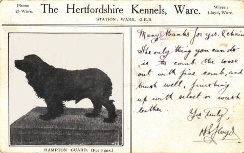 The Hertfordshire Kennels, Ware, Hampton Guard, H S Lloyd