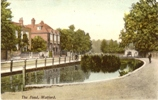 watford-top-town-pond-04