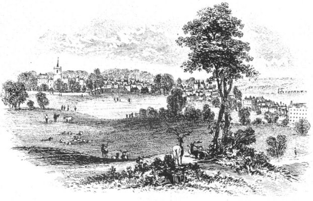 Wiggenhall Park, with Watford in the background